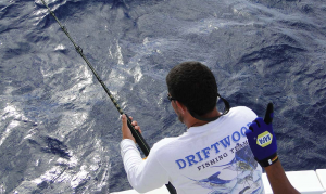 Charter Fishing Trips Feature